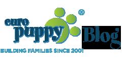 Europuppy blog