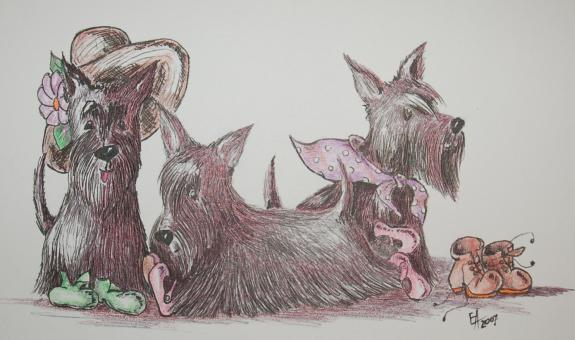 Scottish Terrier - Elena Adam