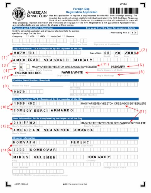How to Fill Out Your AKC Foreign Dog Registration Form