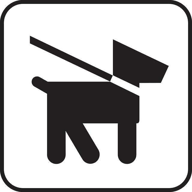 dog leash rules
