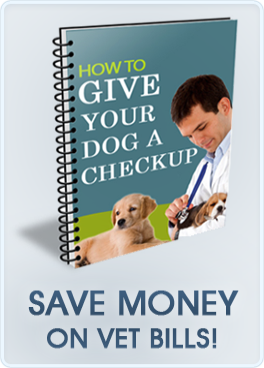 https://www.europuppy.com/euro_puppy_ebooks/give-your-dog-a-checkup-buy-now/