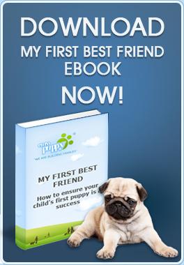 https://www.europuppy.com/euro_puppy_ebooks/my-first-best-friend-free-download/