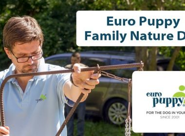 Blog-Cover-Euro-Puppy-Family-Nature-Day-2-WhiteBackground-Good